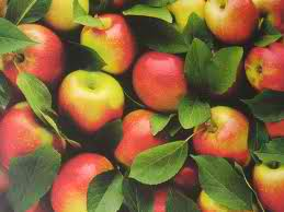nutrition-apples-wellness-pesticides