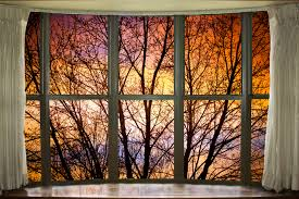 nature_window