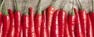 Feedback-peppers